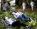 New Moon ~ Edward & Bella ~ - twilight-series photo