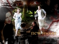 New Moon scene - twilight-series photo
