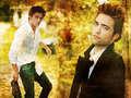 R.Pattinson Wallpapers <3