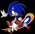 Sonic on a Skateboard - sonic-the-hedgehog photo