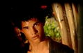 T.Lautner Wallpapers <3