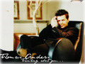 Thomas Anders - modern-talking wallpaper