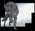 Tsume from Wolf's Rain (Wolf form) - demon_wolf photo