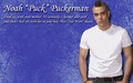 noah puckerman - puck wallpaper