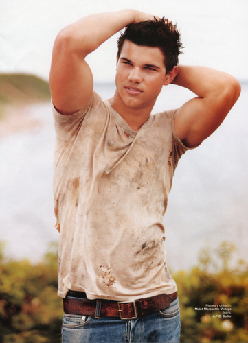 Taylor Lautner پیپر وال titled taylor <3