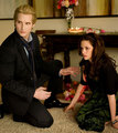Bella&Carlisle - bella-and-carlisle photo