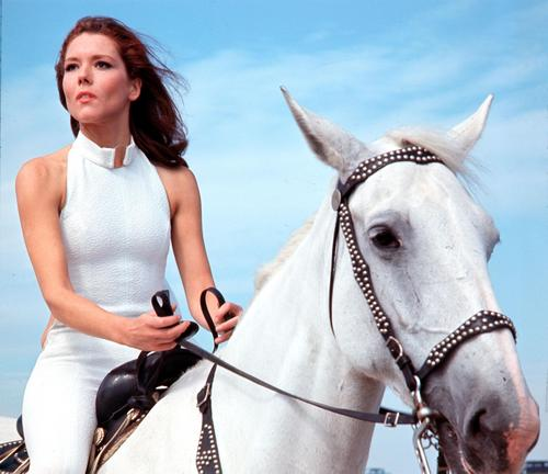 Diana Rigg kertas dinding with a lippizan, a horse trail, and a horse wrangler titled Diana and horse