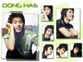Donghae - super-junior wallpaper