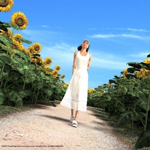 tekken images jun kazama hd wallpaper and background photos 9325361