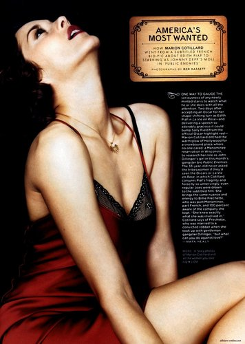 Marion Cotillard wallpaper possibly with attractiveness, a lingerie, and a bikini titled Marion Cotillard | GQ Scans