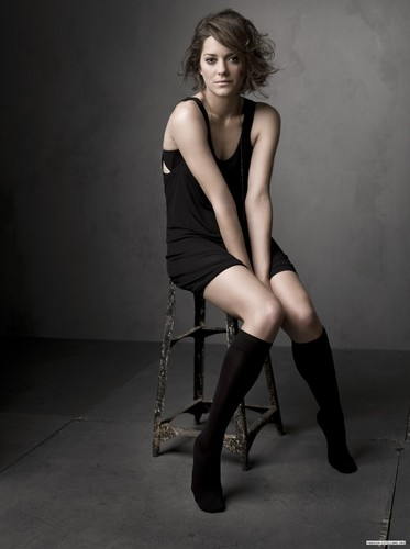 Marion Cotillard wallpaper probably with tights and a leotard titled Marion Cotillard | Telegraph Photoshoot (2009)