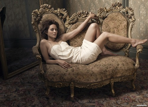 Marion Cotillard wallpaper possibly with a throne, a drawing room, and a living room entitled Marion Cotillard | Telegraph Photoshoot (2009)