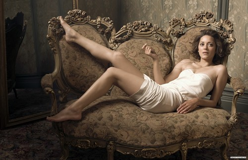 Marion Cotillard wallpaper with a throne, a living room, and a drawing room called Marion Cotillard | Telegraph Photoshoot (2009)