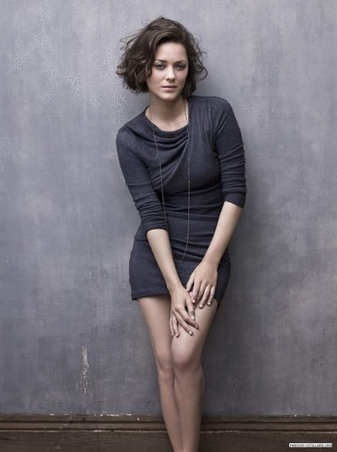 Marion Cotillard | Telegraph Photoshoot (2009) - marion-cotillard Photo