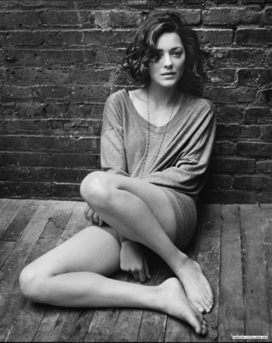Marion Cotillard images Marion Cotillard | Telegraph Photoshoot (2009) HD wallpaper and background photos