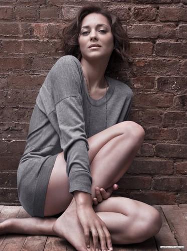 Marion Cotillard | Telegraph Photoshoot (2009)