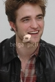 NEW LA Press Conference Pictures	 - twilight-series photo
