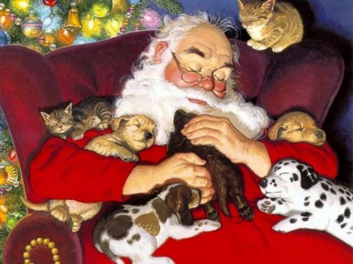Santa with chiots and chatons
