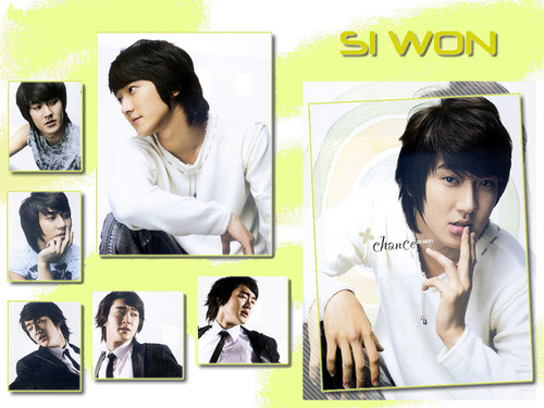 Super Junior Обои with a portrait titled Siwon