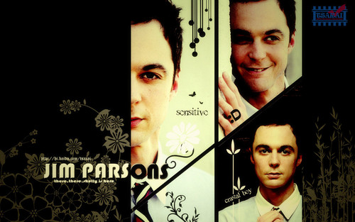 The Big Bang Theory wallpaper with a chainlink fence and a business suit titled TBBTwallpapers