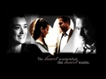 The Heart Wants What The Heart Wants - tiva wallpaper