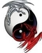 Yin and Yang dragons - dragons icon