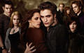 twilight-movie - new moon wallpaper