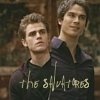 http://images2.fanpop.com/image/photos/9300000/salvatore-brothers-damon-and-stefan-salvatore-9353147-100-100.jpg