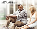 the blind side - the-blind-side wallpaper