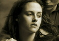 twillight offical wallpaper - twilight-series photo