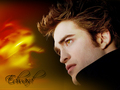•♥• Edward Cullen •♥• - twilight-series photo