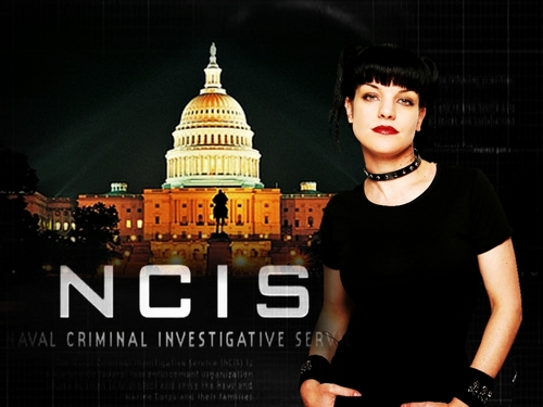 NCIS - Unità anticrimine - Unità anticrimine wallpaper possibly containing a business district entitled Abby