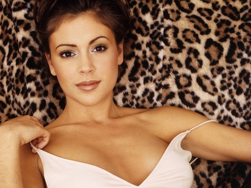 Alyssa Milano wallpaper possibly with a portrait entitled Alyssa Milano