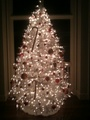 Ashley Greene Tweets A Pic of her Christmas Tree - twilight-series photo