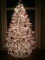 Ashley Greene Tweets A Pic of her Christmas Tree - twilight-series photo