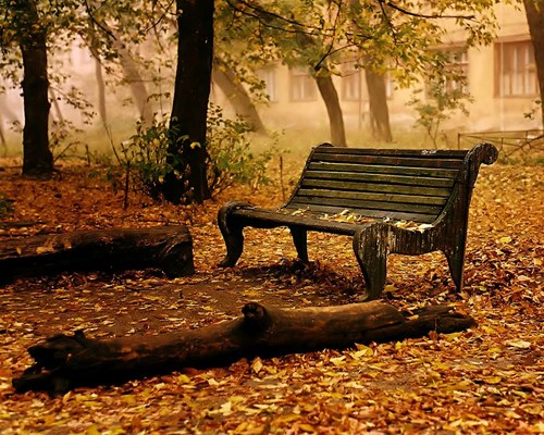 Autumn wallpaper containing a park bench titled Autumn wallpaper