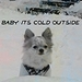 Baby its cold outside !