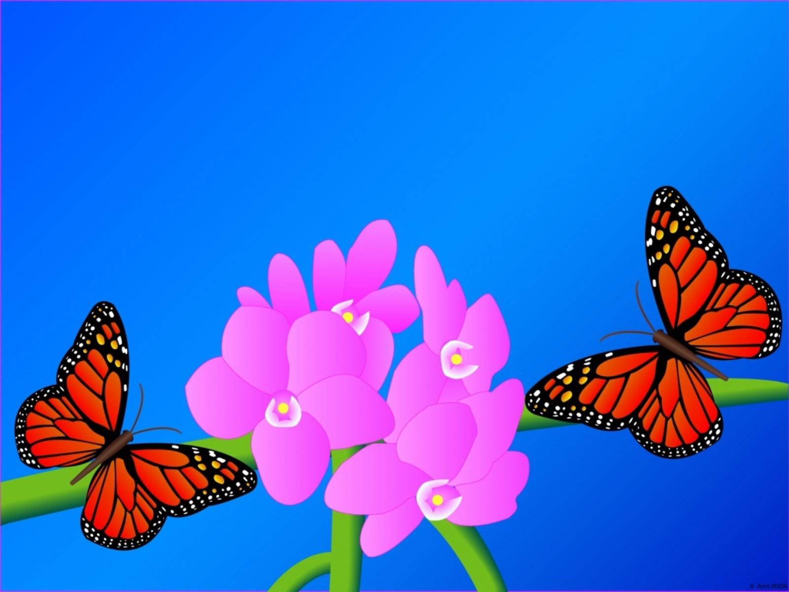 Beautiful Schmetterlinge