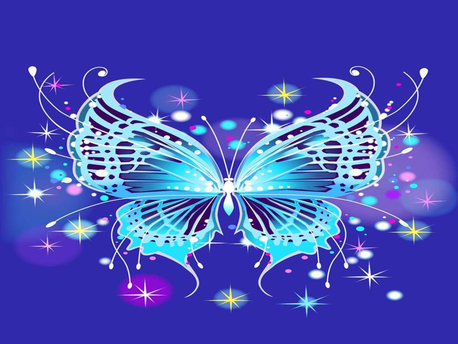 Butterflies images Beautiful Butterflies HD wallpaper and background