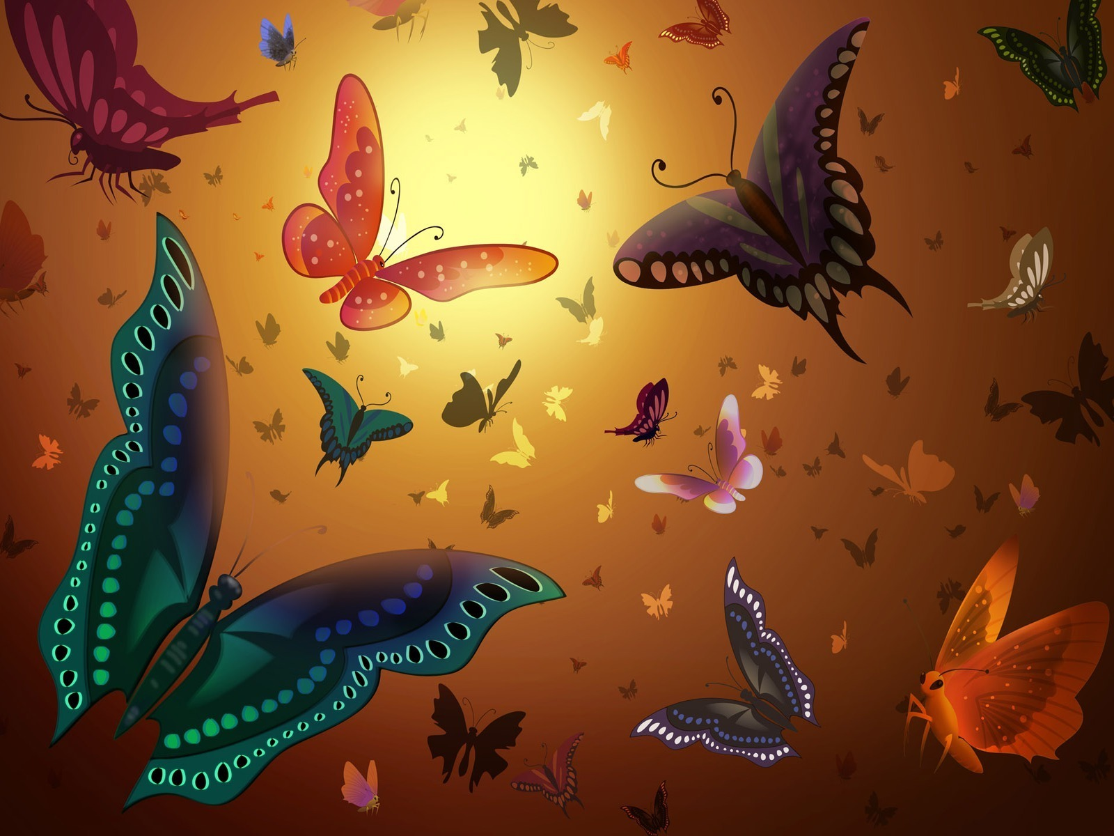 Beautiful Butterflies  Butterflies Wallpaper 9482003  Fanpop