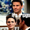 Booth and Brennan - couples-and-shipping Icon