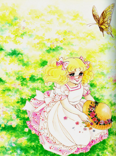 Candy Candy wallpaper probably with a bouquet called Candy Candy