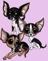 Cuties - chihuahuas fan art