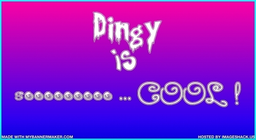 Dingy is Cool banner~!!!