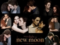 Edward and Bella New Moon - twilight-series photo