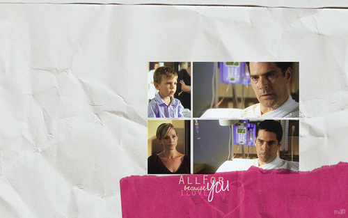 SSA Aaron Hotchner wallpaper probably containing a sign titled Hotchners