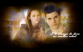 jacob-and-bella - Jake & Bells wallpaper
