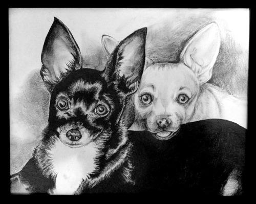Jessie & Gizmo