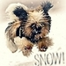 Let it Snow - dogs icon