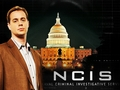ncis - McGee wallpaper